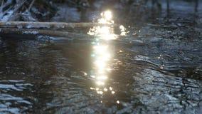 Δασικός ρέοντας όμορφος παγωμένος πάγος ποταμών σε έναν ξηρό κλάδο που ταλαντεύεται, φως του ήλιου, τοπίο έντονου φωτός ήλιων φύσ Στοκ εικόνες με δικαίωμα ελεύθερης χρήσης