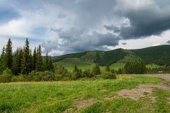 Δασικός δρόμος ουρανού βουνών Στοκ Εικόνες