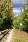 δασικός σιδηρόδρομος Στοκ φωτογραφίες με δικαίωμα ελεύθερης χρήσης