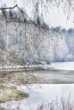 Δασικός υπαίθρια ουρανός χειμερινού υπαίθρια χιονιού ποταμών δέντρων Στοκ Εικόνα