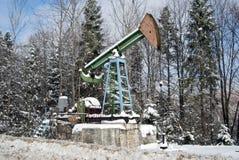 δασικός χειμώνας αντλιών πετρελαίου Στοκ Εικόνες