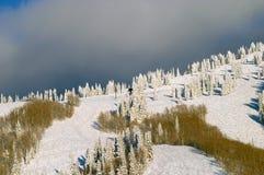 δασικός χειμώνας βουνών στοκ εικόνα με δικαίωμα ελεύθερης χρήσης