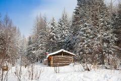 δασικός χειμώνας καμπινών Στοκ φωτογραφία με δικαίωμα ελεύθερης χρήσης
