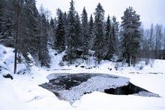δασικός χειμώνας λιμνών βρ&a Στοκ φωτογραφίες με δικαίωμα ελεύθερης χρήσης