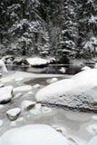δασικός χειμώνας ποταμών Στοκ φωτογραφία με δικαίωμα ελεύθερης χρήσης