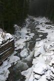 δασικός χειμώνας ποταμών Στοκ Φωτογραφίες