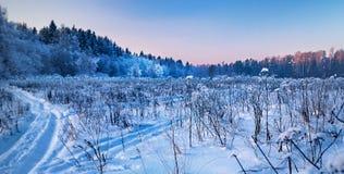 δασικός χειμώνας συνόρων Στοκ εικόνα με δικαίωμα ελεύθερης χρήσης