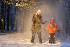 δασικός χιονώδης περίπατος Στοκ Εικόνες