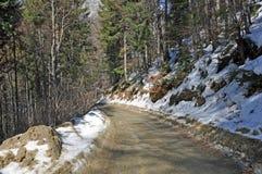 δασικός χιονώδης τρόπος Στοκ φωτογραφία με δικαίωμα ελεύθερης χρήσης
