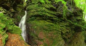 δασικός mossy καταρράκτης βράχων στοκ φωτογραφίες