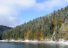 δασικό βουνό Στοκ εικόνες με δικαίωμα ελεύθερης χρήσης