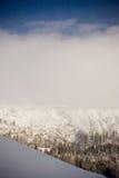 δασικό βουνό Στοκ Εικόνα