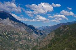 δασικό εθνικό sequoia ΗΠΑ Καλιφό Στοκ Εικόνες