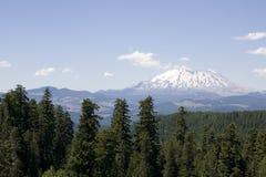 Δασικό ηφαίστειο του ST Helens βουνών στοκ φωτογραφία με δικαίωμα ελεύθερης χρήσης