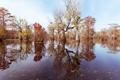 Δασικό κρατικό πάρκο ΗΠΑ δεξαμενών υδρόμυλου NC εμπόρων υγρότοπου Στοκ Εικόνες