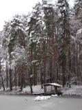 Δασικό ` λιμνών χειμερινών ακτών χιονισμένο gazebo ομορφιάς ` ύπνου ονείρου ` ` πεύκων ασημένιο στοκ φωτογραφία