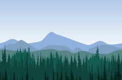 Δασικό πανόραμα βουνών Στοκ Εικόνες