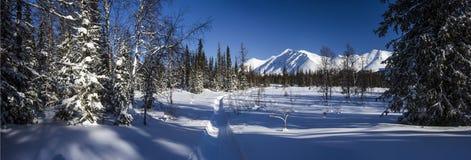 Δασικό πανόραμα βόρειων Ουραλίων χειμερινών βουνών Στοκ Φωτογραφία