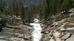 Δασικό ρεύμα Yosemite φιλμ μικρού μήκους