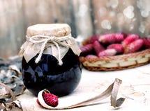 Δασικό σιρόπι φρούτων στοκ εικόνες