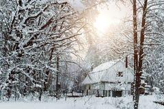 δασικό σπίτι χιονώδες Στοκ Φωτογραφία