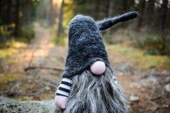 Δασικό στοιχειό σε ένα μονοπάτι Στοκ φωτογραφία με δικαίωμα ελεύθερης χρήσης