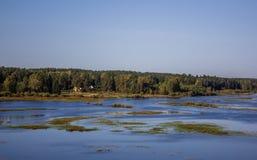 Δασικό τοπίο Σεπτεμβρίου στη Ρωσία το απόγευμα Στοκ εικόνα με δικαίωμα ελεύθερης χρήσης