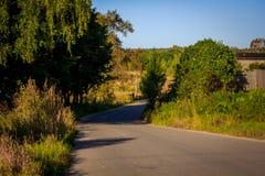 Δασικό τοπίο Σεπτεμβρίου στη Ρωσία το απόγευμα Στοκ φωτογραφία με δικαίωμα ελεύθερης χρήσης