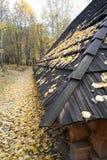 δασικό τοπίο σπιτιών φθινοπώρου Στοκ Εικόνες