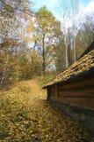 δασικό τοπίο σπιτιών φθινοπώρου Στοκ Εικόνα