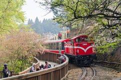 Δασικό τραίνο Alishan στην εθνική φυσική περιοχή Ταϊβάν Alishan στοκ φωτογραφίες με δικαίωμα ελεύθερης χρήσης