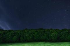 Δασικό υπόβαθρο νύχτας νυχτερινός ουρανός έναστρ αστέρια νυχτερινού ουρα&nu Στοκ Φωτογραφία