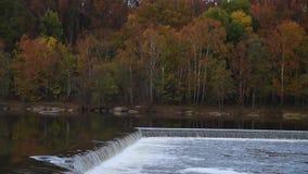 Δασικό χρώμα πτώσης φθινοπώρου φραγμάτων ποταμών απόθεμα βίντεο
