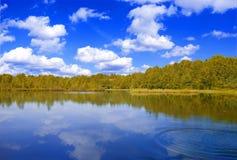 δασικό NAD λιμνών Στοκ Φωτογραφίες