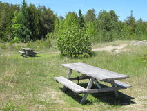 δασικό picnic περιοχής Στοκ εικόνες με δικαίωμα ελεύθερης χρήσης