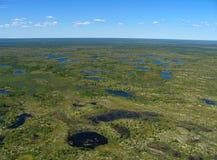 δασικό tundra τοπίων στοκ φωτογραφίες με δικαίωμα ελεύθερης χρήσης