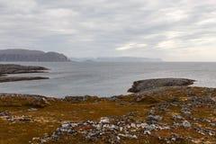 Δασύτριχη φύση Στοκ φωτογραφίες με δικαίωμα ελεύθερης χρήσης
