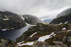 Δασύτριχο τοπίο Στοκ εικόνα με δικαίωμα ελεύθερης χρήσης