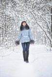 δασώδης περιοχή χιονιού &sigma Στοκ εικόνες με δικαίωμα ελεύθερης χρήσης
