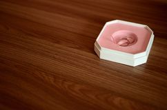 Δαχτυλίδια γάμου μέσα και κιβώτιο Στοκ εικόνα με δικαίωμα ελεύθερης χρήσης