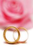 δαχτυλίδια δύο γάμος Στοκ εικόνες με δικαίωμα ελεύθερης χρήσης