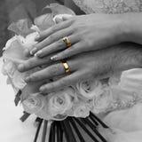 δαχτυλίδια Στοκ Εικόνες