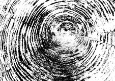 Δαχτυλίδι δέντρων, κούτσουρο, ξύλινη σύσταση μαύρο λευκό Διανυσματική απεικόνιση eps 10 που απομονώνεται στο άσπρο υπόβαθρο διανυσματική απεικόνιση