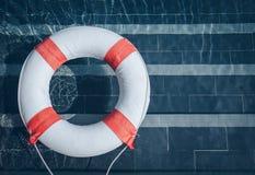 Δαχτυλίδι ζωής στη λίμνη Στοκ εικόνες με δικαίωμα ελεύθερης χρήσης