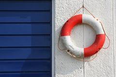 δαχτυλίδι ζωής Στοκ φωτογραφία με δικαίωμα ελεύθερης χρήσης