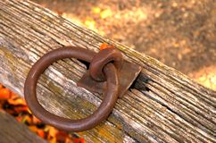 Δαχτυλίδι σιδήρου Στοκ εικόνες με δικαίωμα ελεύθερης χρήσης