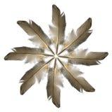 δαχτυλίδι φτερών Στοκ Φωτογραφίες