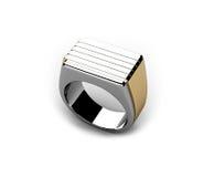 δαχτυλίδι Στοκ εικόνες με δικαίωμα ελεύθερης χρήσης