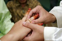 δαχτυλίδι Στοκ φωτογραφίες με δικαίωμα ελεύθερης χρήσης