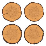 Δαχτυλίδια δέντρων και κορμός δέντρων περικοπών πριονιών απεικόνιση αποθεμάτων